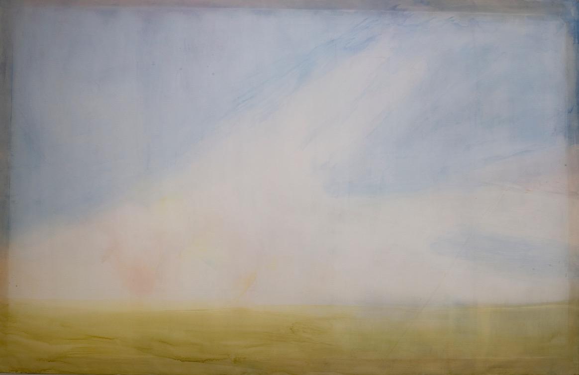 Untitled, 2016, Aquarelle sur polyester, 138 x 214 cm