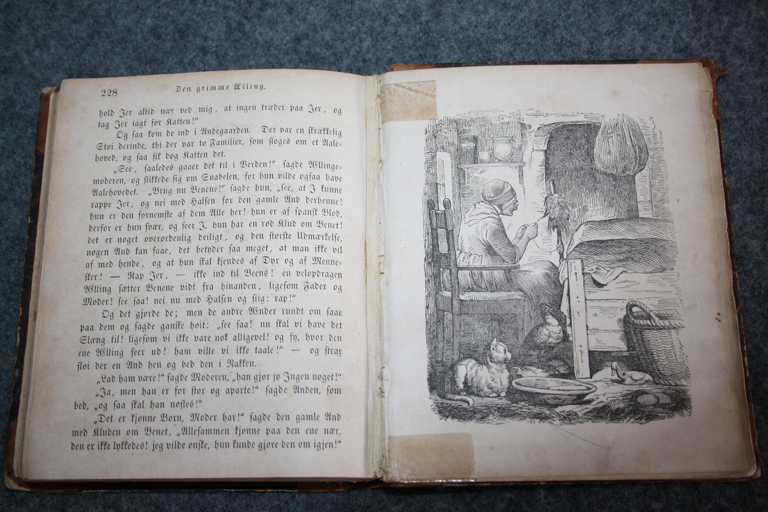 The ugly duckling in my 1854 copy of Hans Christian Andersen.