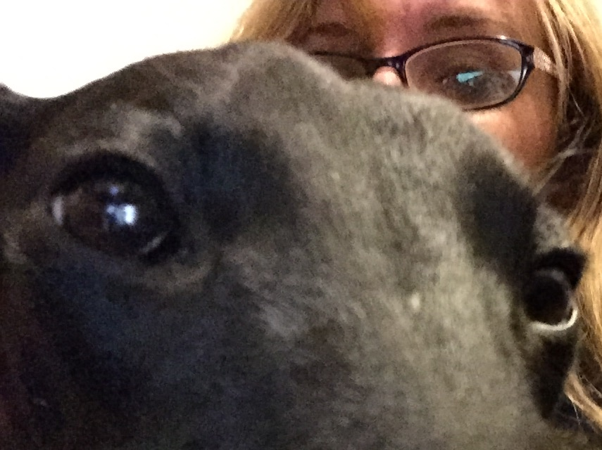 Back home in central Victoria at last. A final selfie with Olive, my whippet.