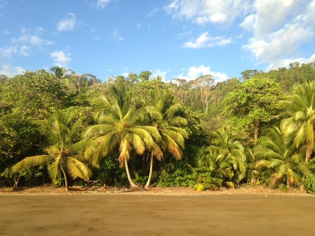 yoga caravan costa rica beach