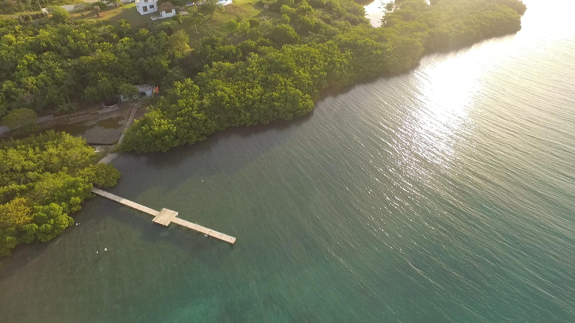 NVE Dock aerial view.jpg