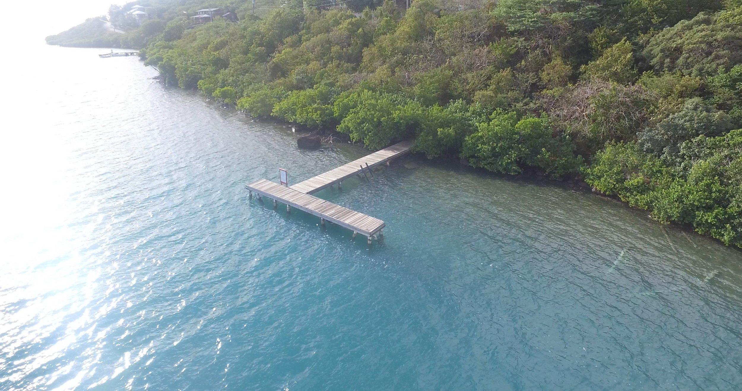 Aloe Dock2.jpg