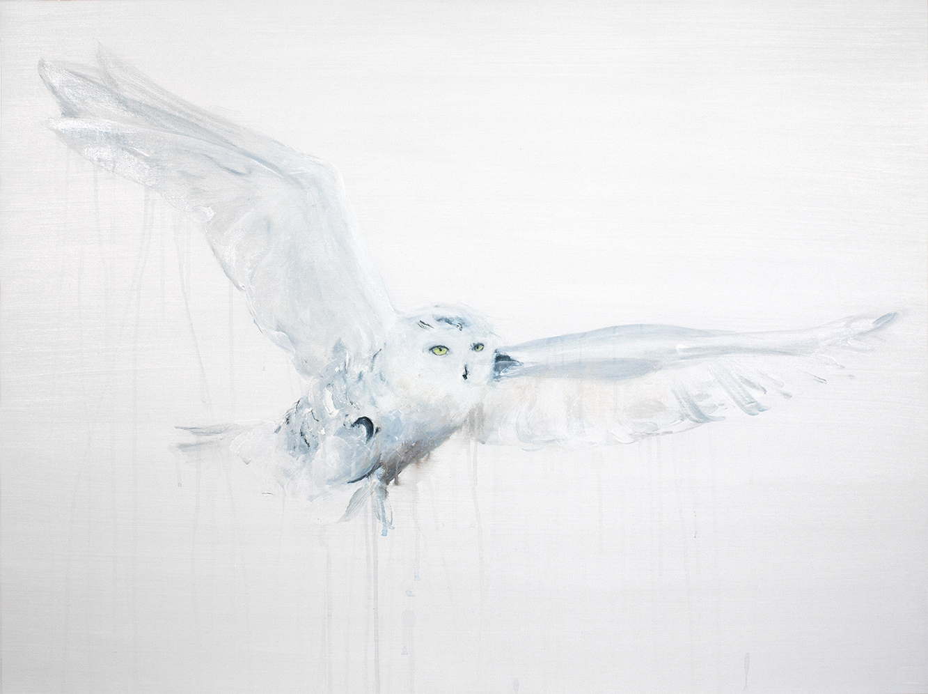 SNOWY OWL II_Animals In Motion_MyriamRousseauArt.png