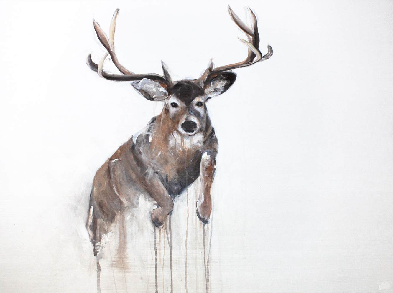 DEER I_Animals In Motion_MyriamRousseauArt.png