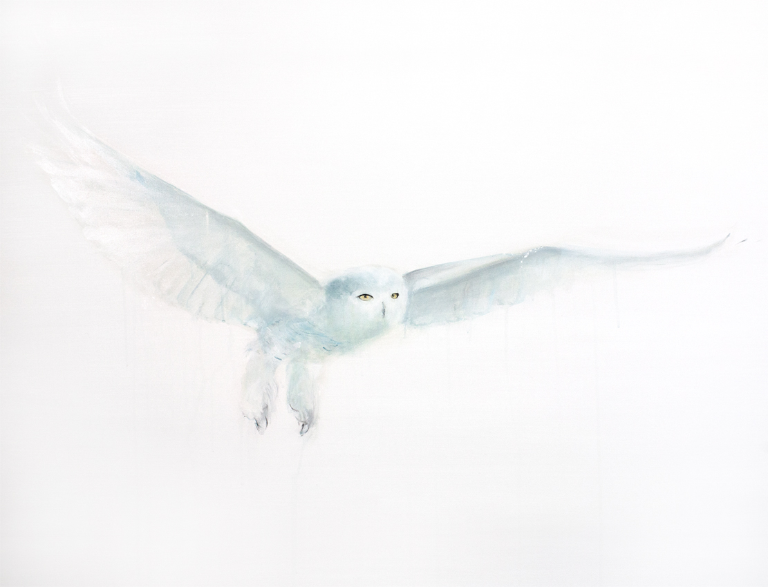 SNOWY OWL IV_Animals In Motion_MyriamRousseauArt.png