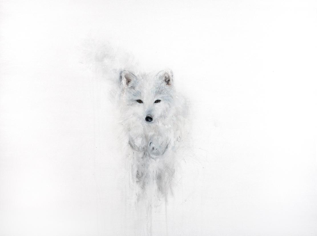 ARCTIC FOX I_Animals In Motion_MyriamRousseauArt.png