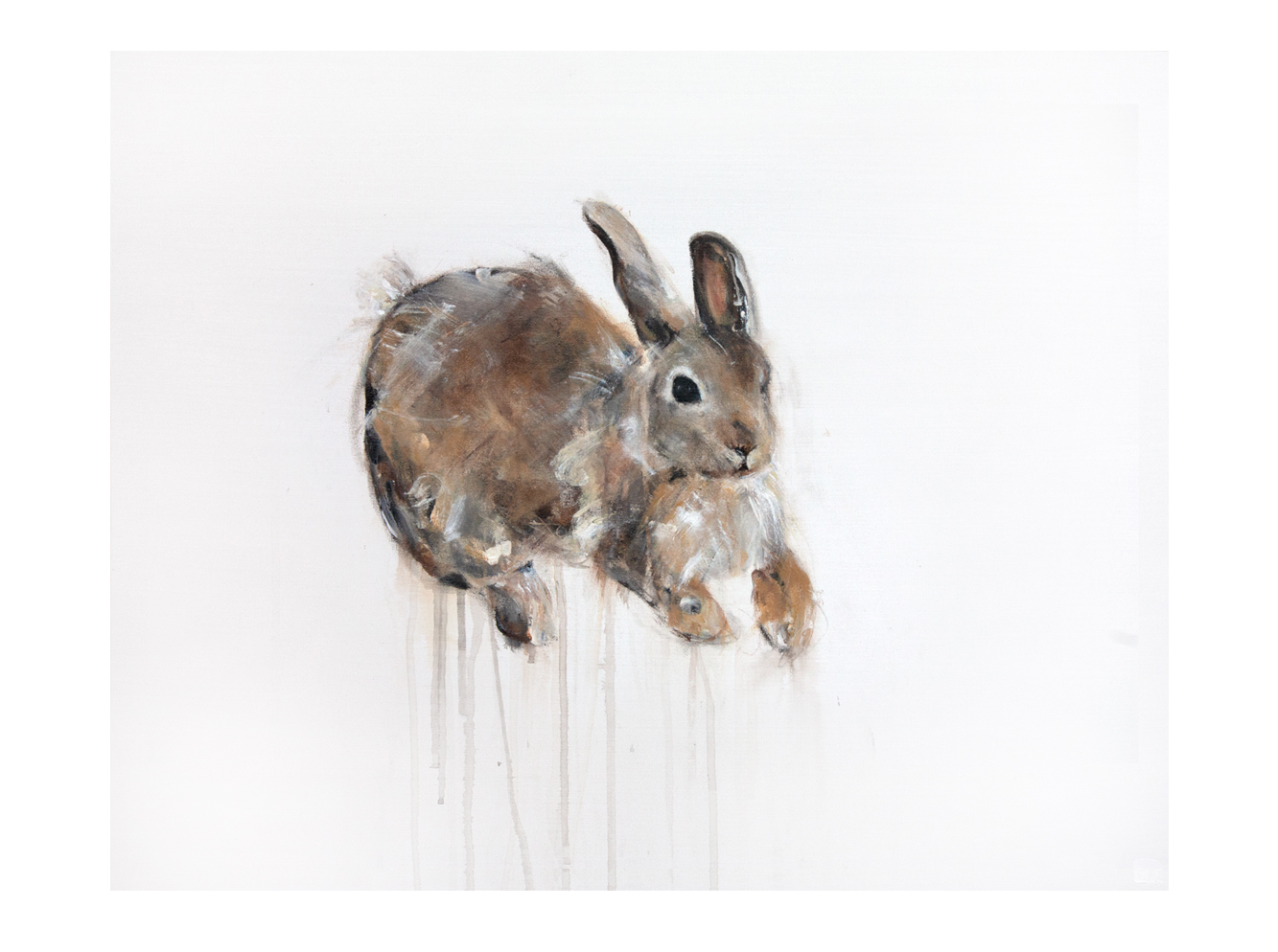 COTTONTAIL RABBIT I_Animals In Motion_MyriamRousseauArt.png