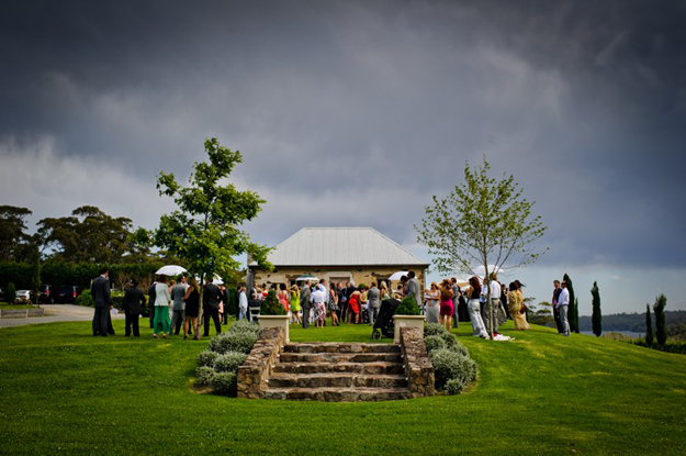 Cupitts Winery_011