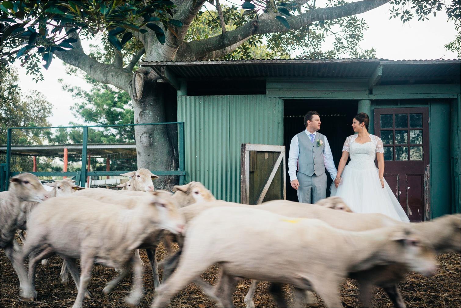 Cherish&Morgan_Albert_River_Wines_wedding-by_The_Follans_Gold_Coast_Wedding_Photographers_0059.jpg