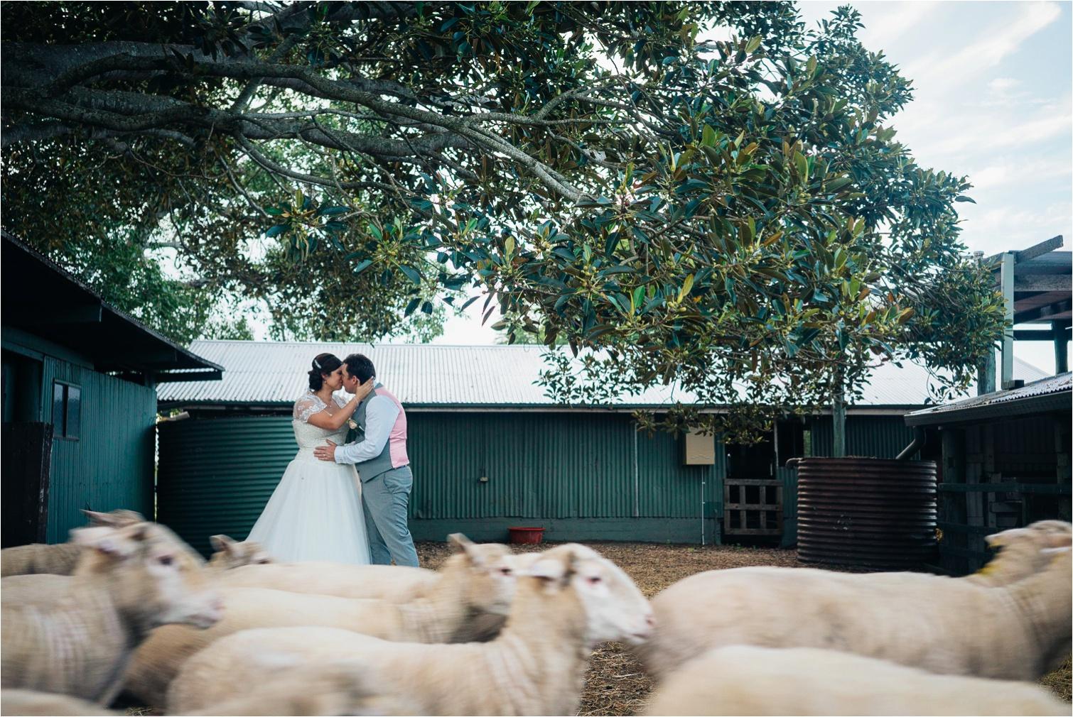 Cherish&Morgan_Albert_River_Wines_wedding-by_The_Follans_Gold_Coast_Wedding_Photographers_0060.jpg
