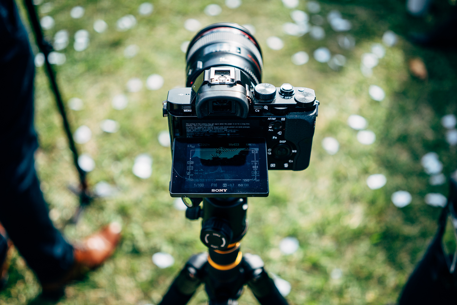 Pavey-Films-Gold_Coast_Wedding_Videographer-2.jpg