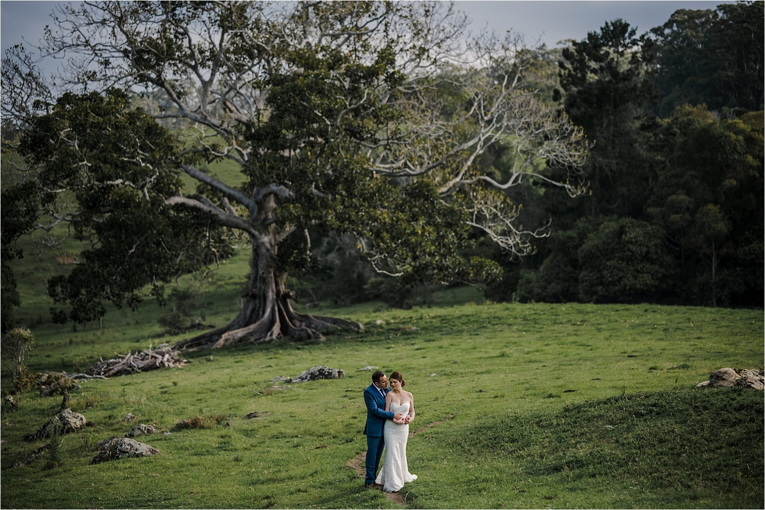 Cowbell creek figtree wedding photography