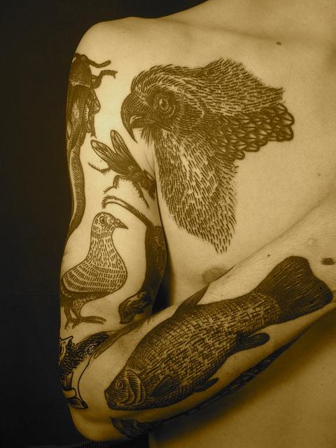 liam-sparkes-tattoo-vivid-fauna-arm-sleeve.jpg