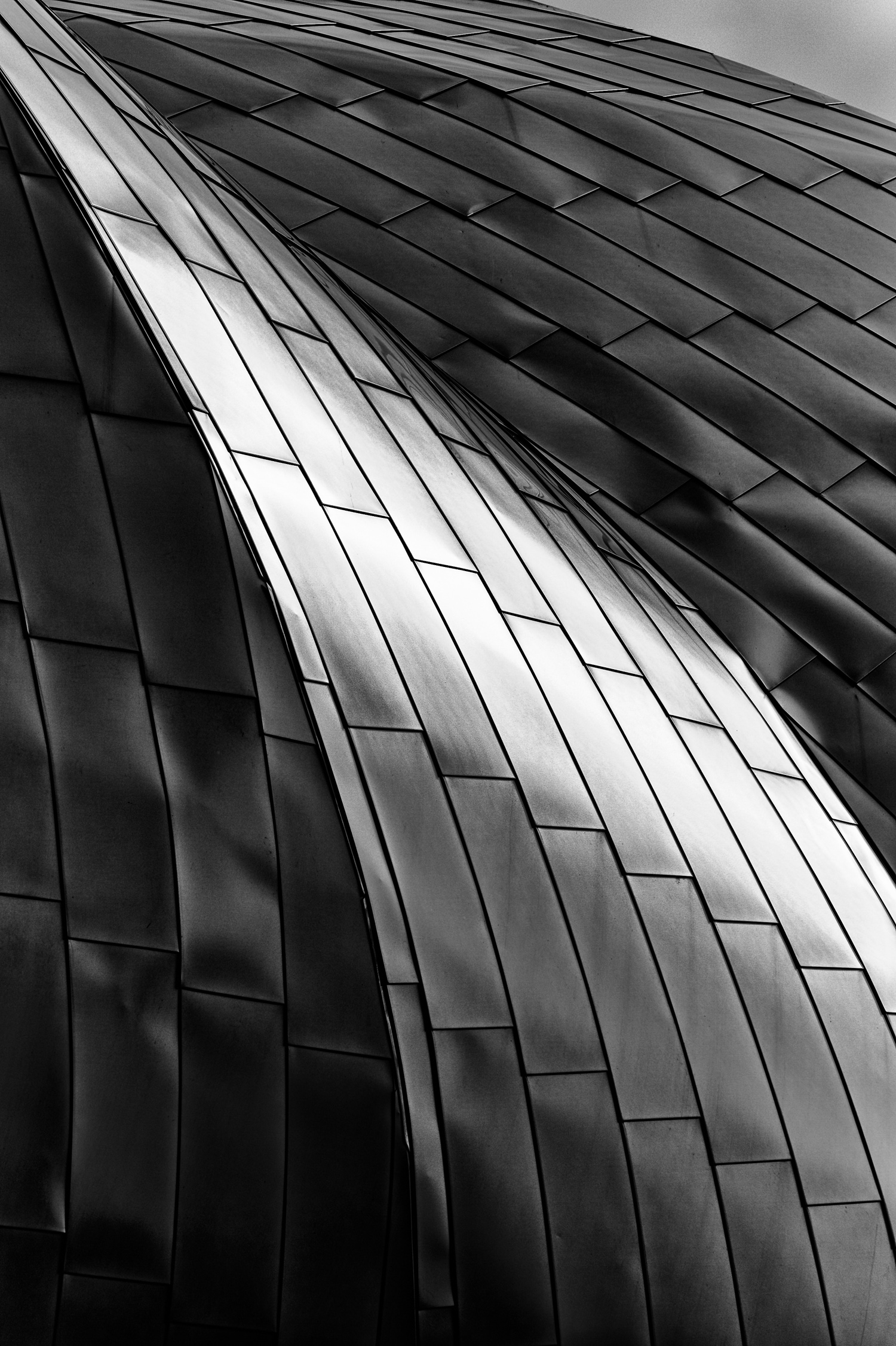 Stainless Wave