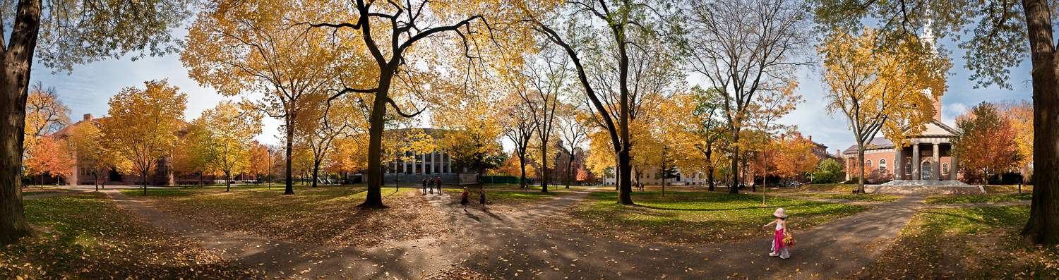 Harvard Yard (2nd Ed.)