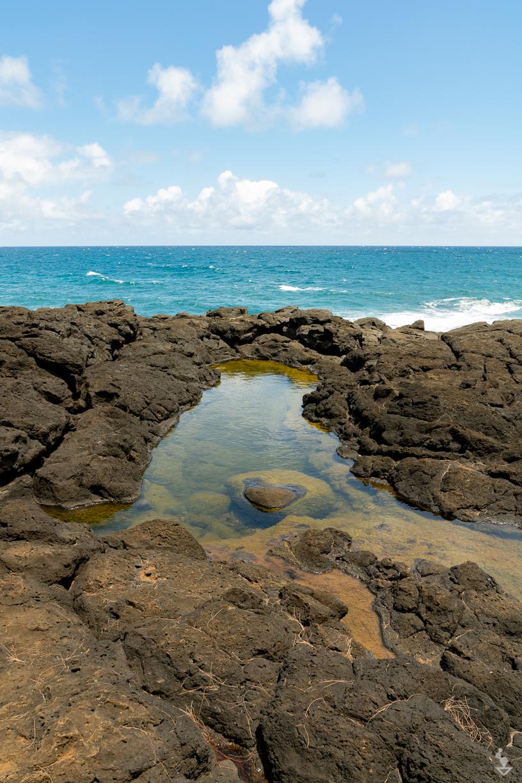 Kauai - Portfolio-22.jpg