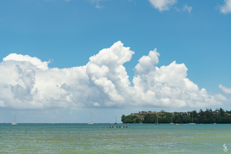 Kauai - Portfolio-24.jpg
