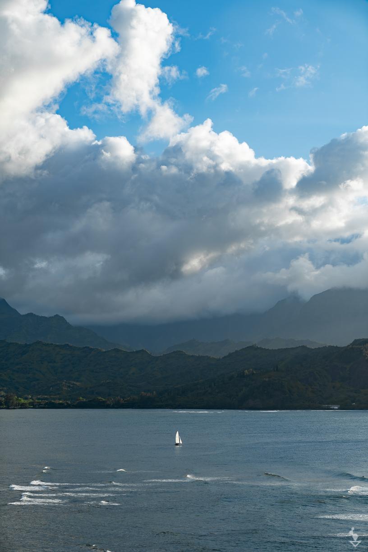 Kauai - Portfolio-26.jpg