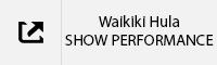 Waikiki Hula Show Performance Tab.jpg