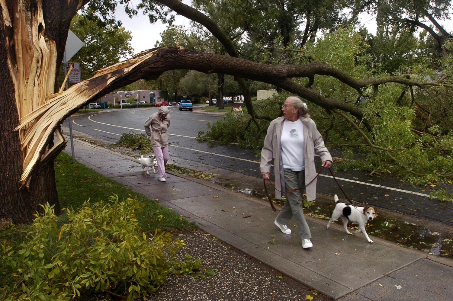 Stacy Hayworth left, and her mother Sue Hayworth duck underneath the broken bough of a wind-damaged tree on C Street near 39th Street in Sacramento on Tuesday October 19, 2004.