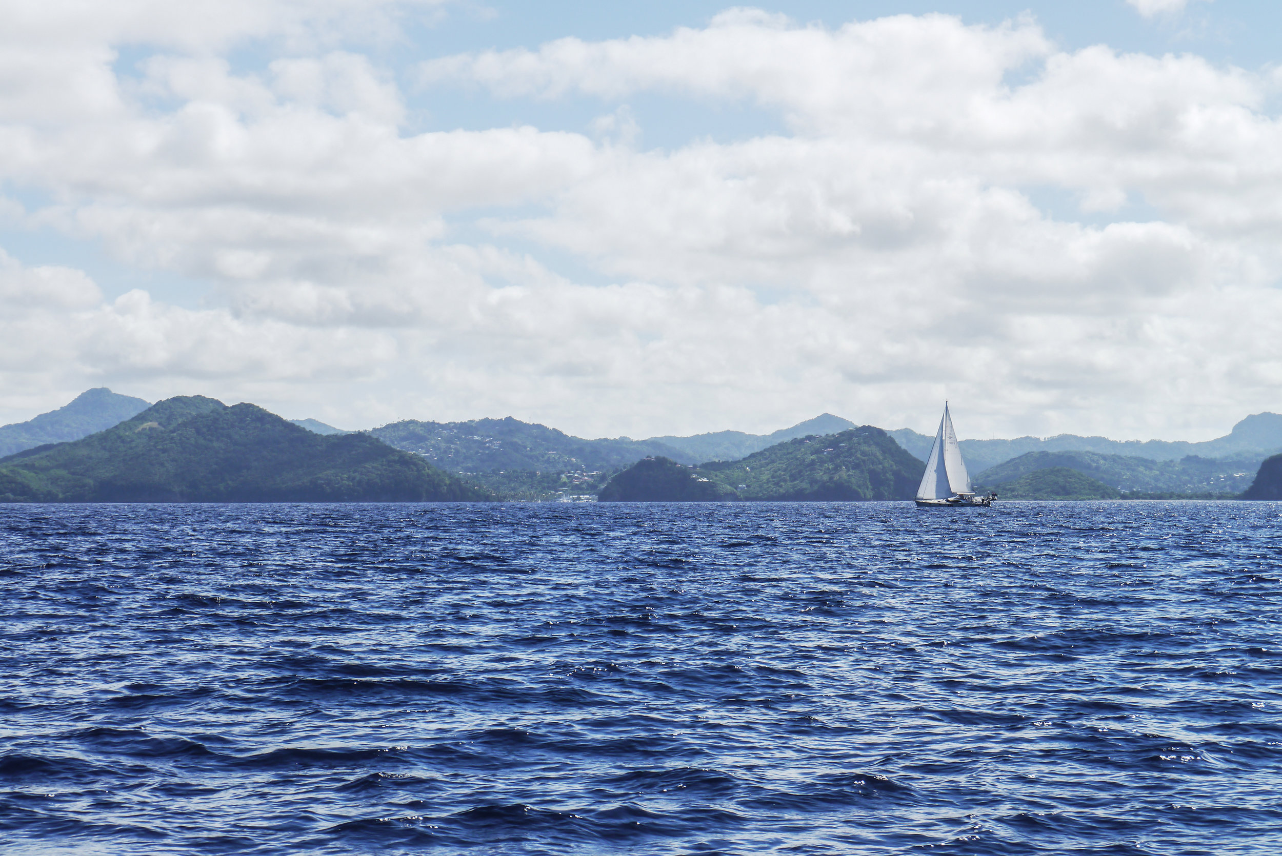 Canva - White Boat With Sail on Body of Water.jpg