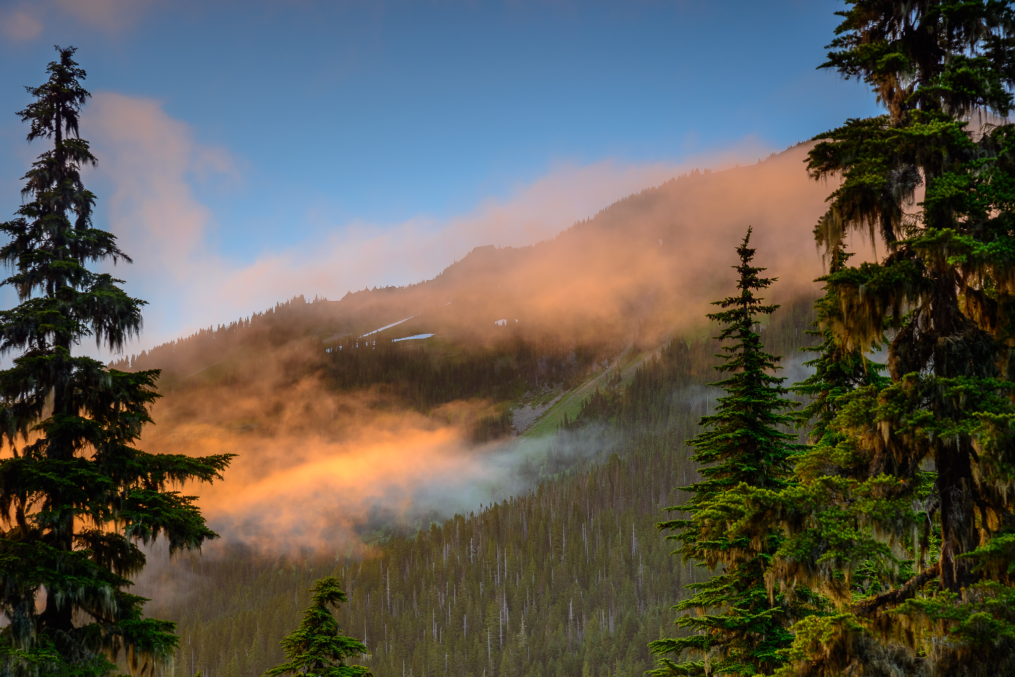 Concert like light effects spill into the Seven Lakes Basin region of Olympic National Park, WA.