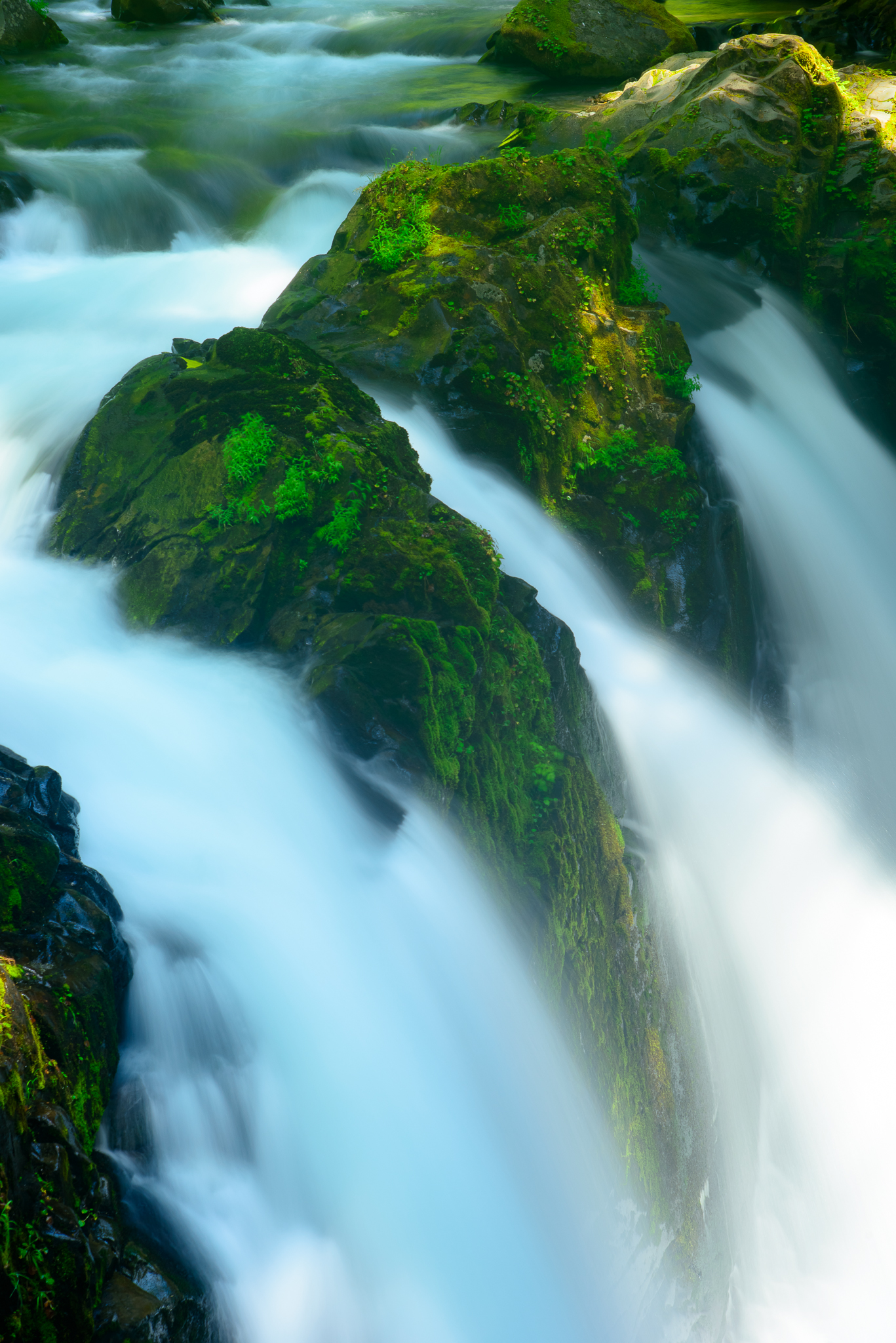 An intimate view of the poplular Sol Duc Falls in Olynpic Nationak Park, WA.