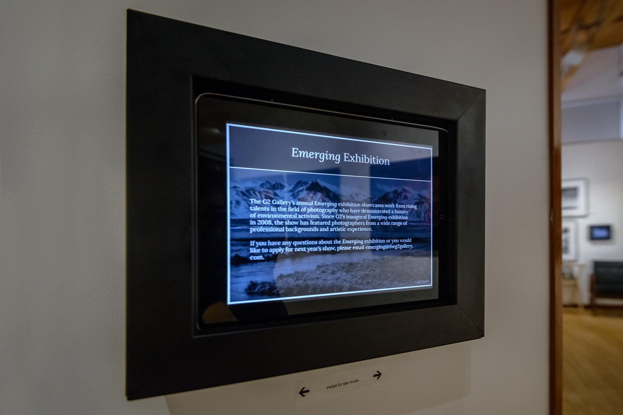 g2_gallery_emerging_exhibit4.jpg