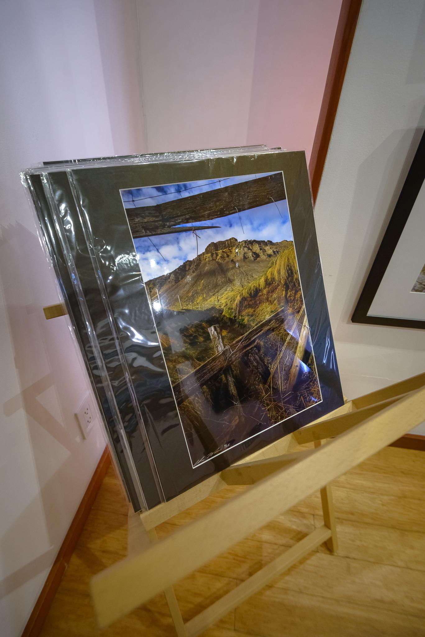 g2_gallery_emerging_exhibit7.jpg