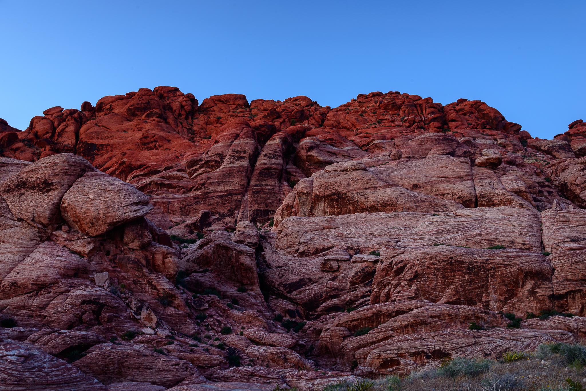 Really, that's what the rocks look like!. Red Rock National Conservation Area, NV.