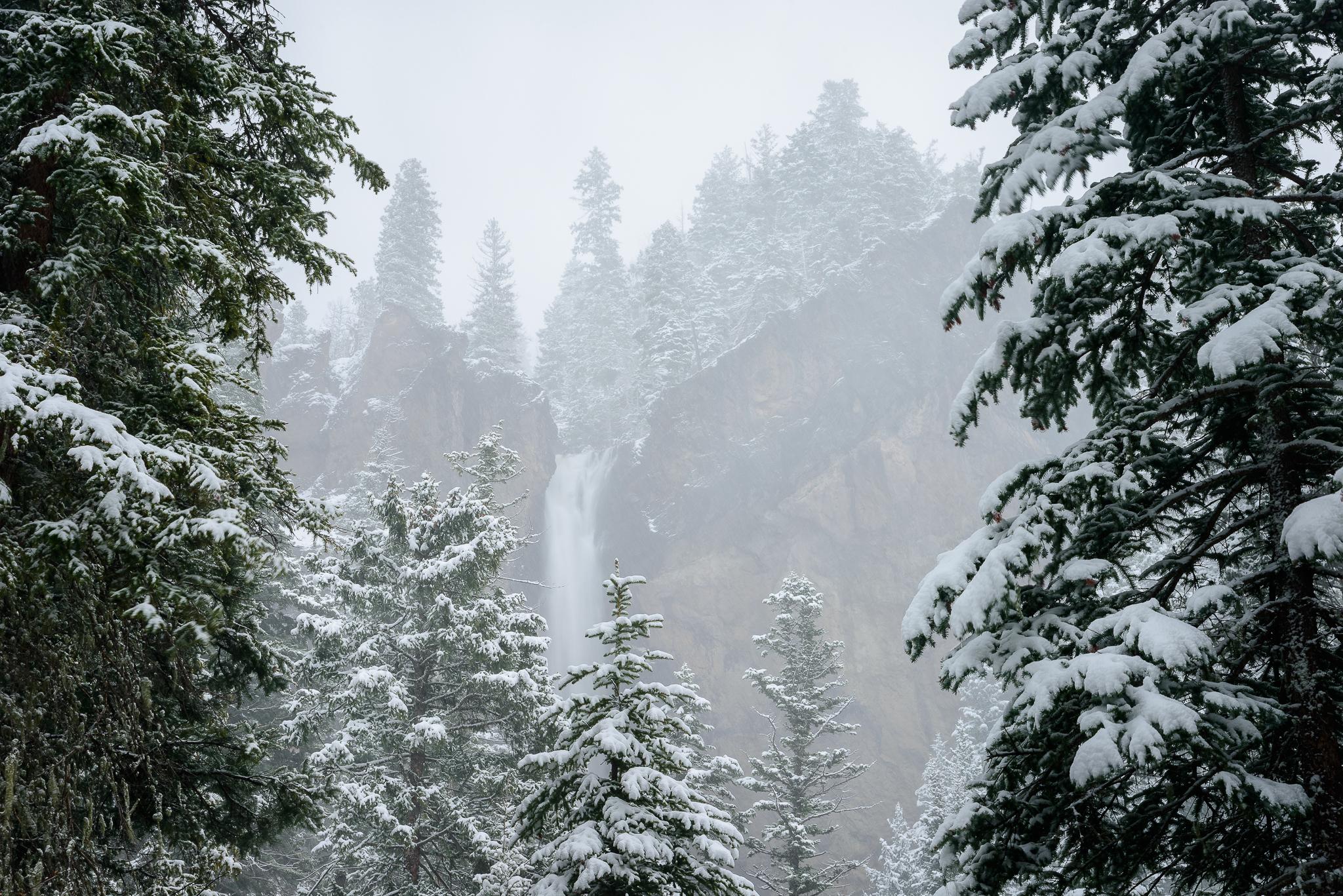 Treasure Falls peaking through the trees. Wolf Creek Pass, CO.
