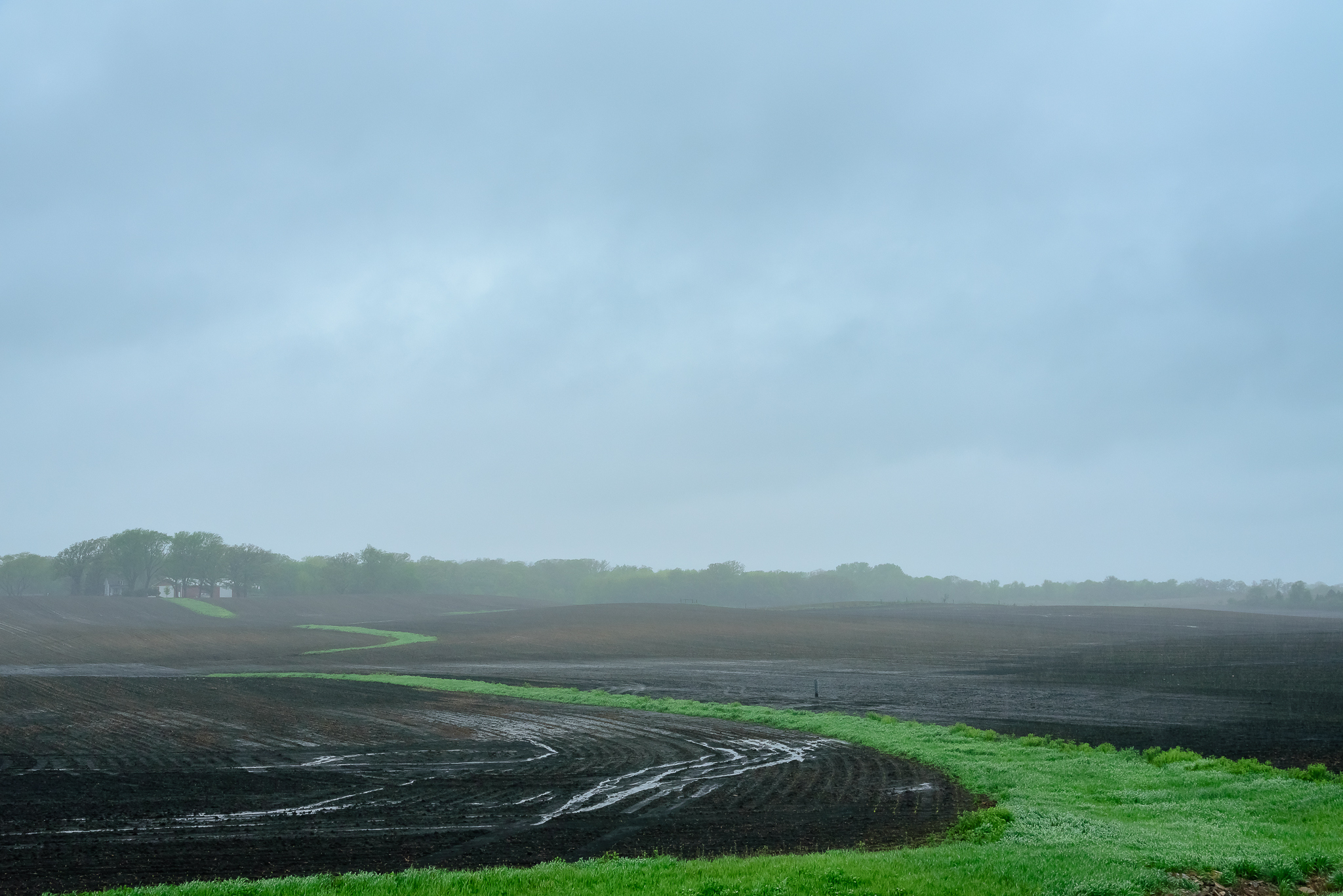 The day of rain. All the rain. Emmons, MN.