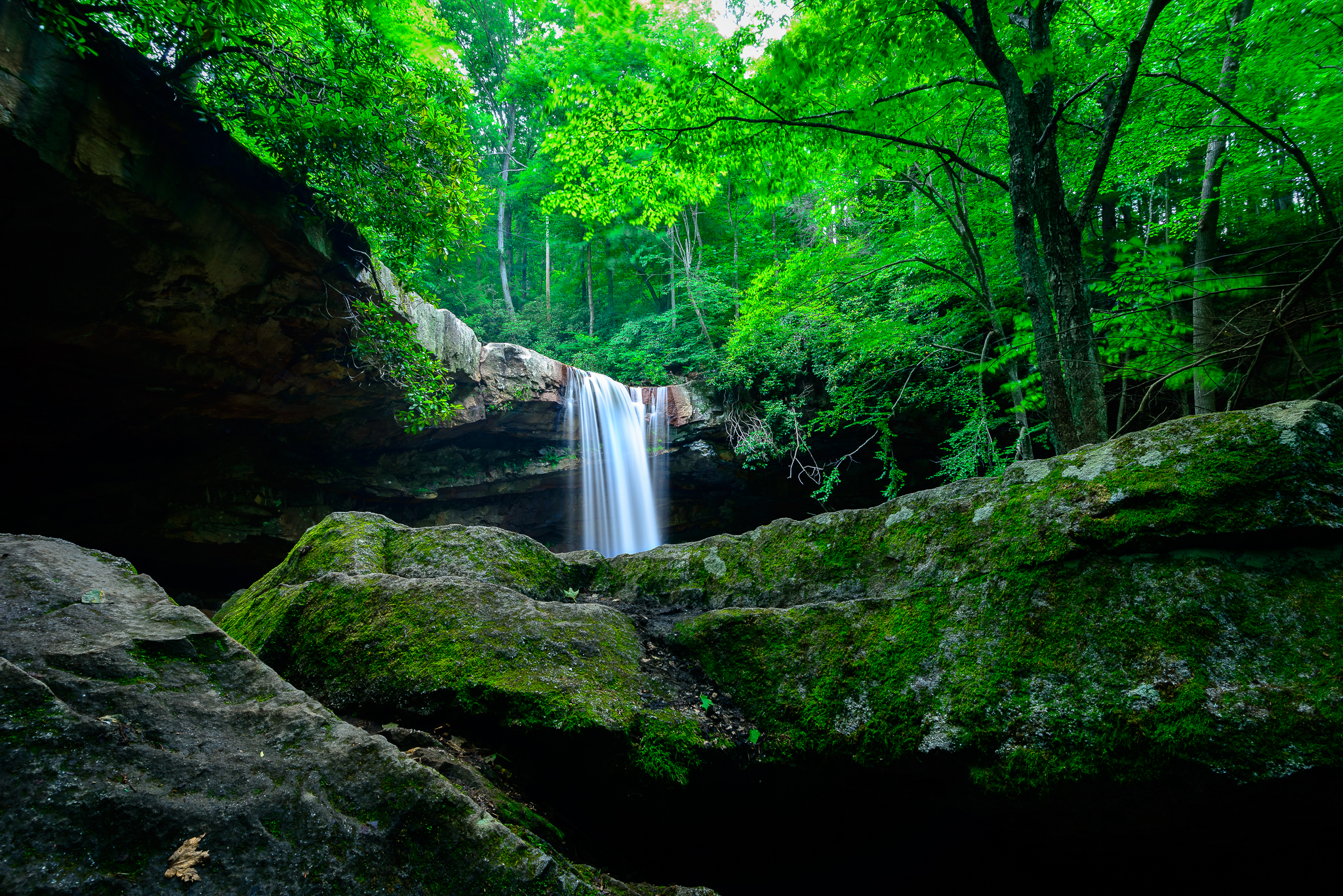 7/21/15. Family day at the best waterfall in Western, PA.