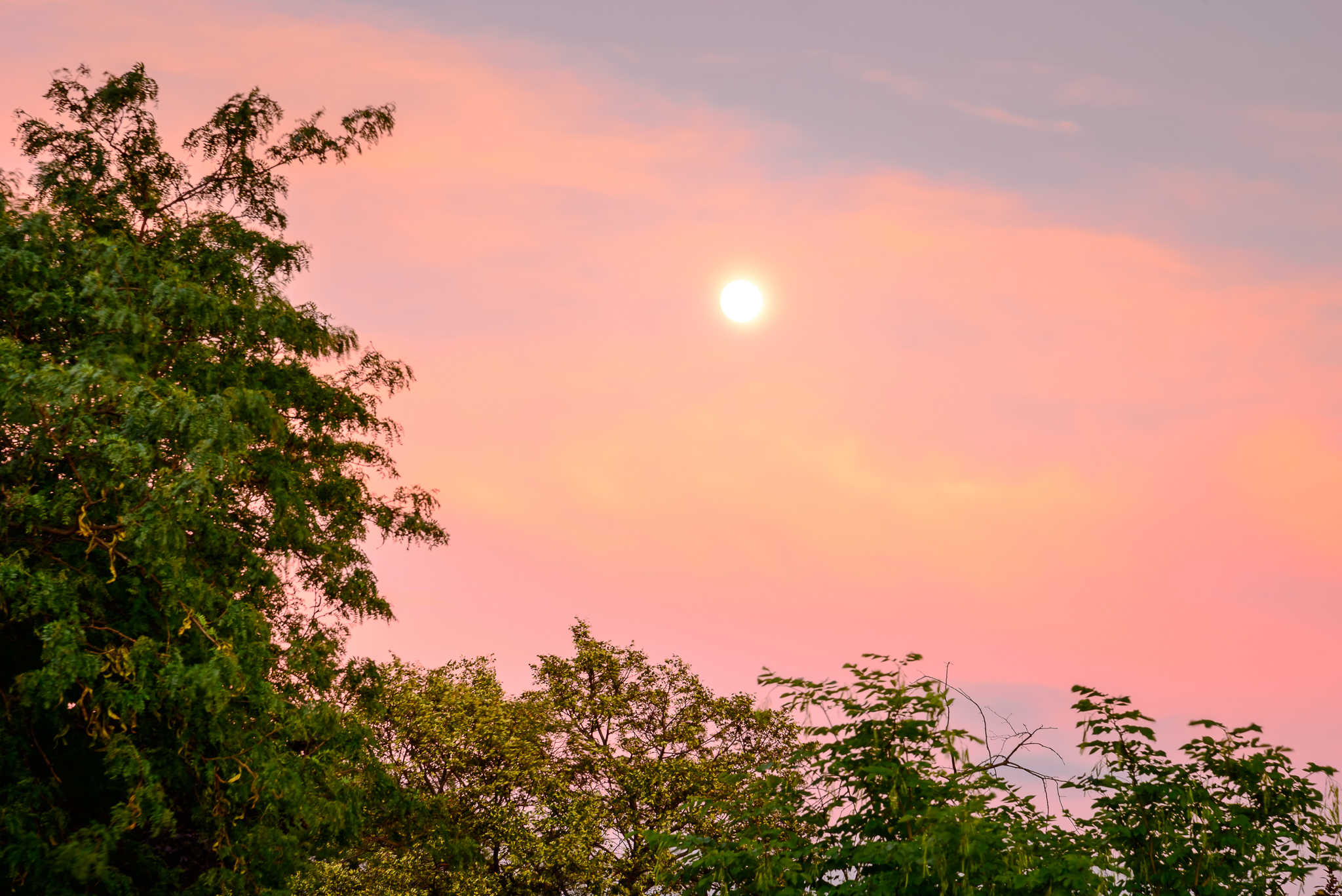 7/29/15. When a good LA buddy is visiting all you have time for is a quick neighborhood sunset/moonrise.