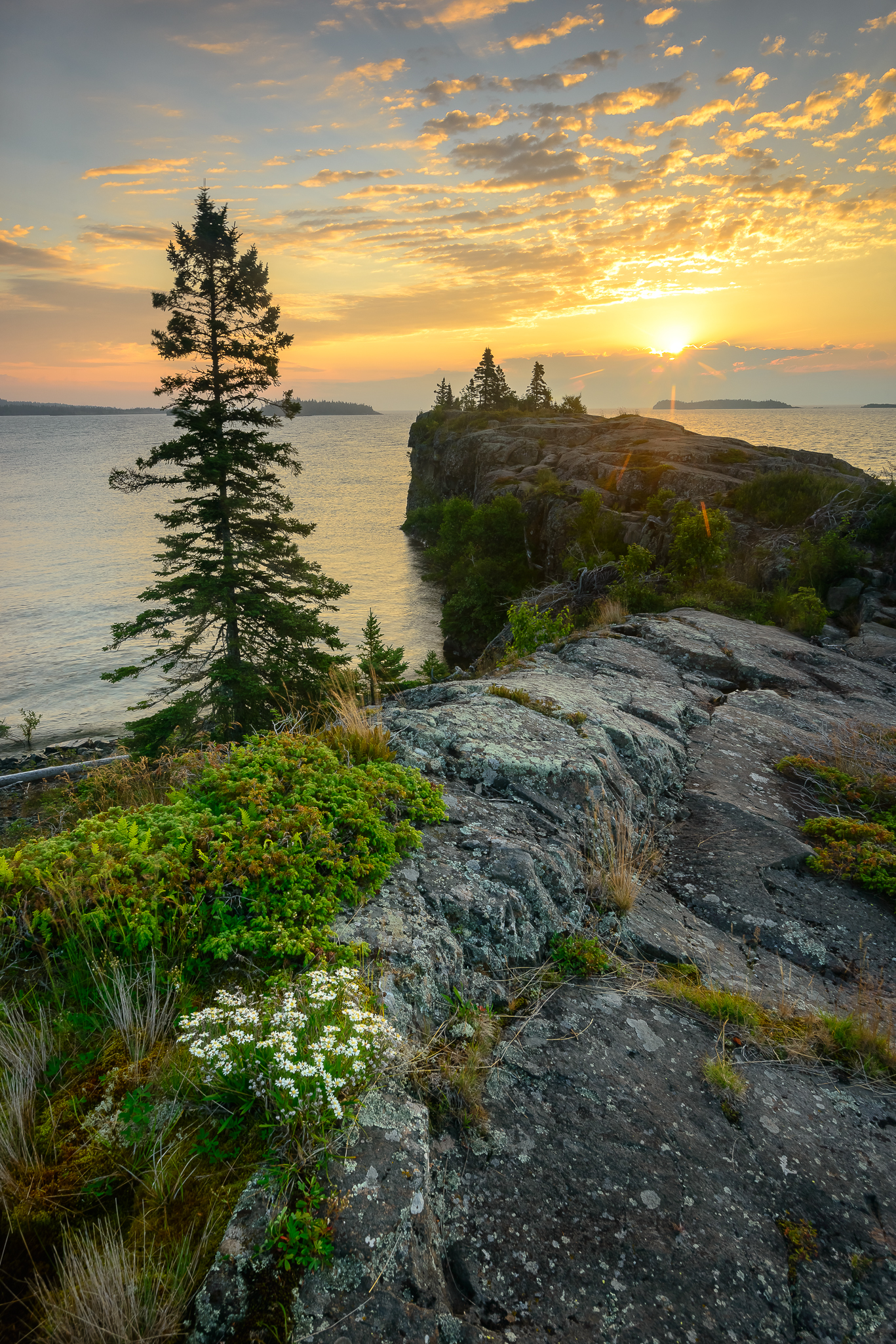 Sunrises have never been easy for me, but hitting the trail at 5:30 AM this morning was invigorating. Damn I sure did feel alive. Scoville Point, Isle Royale, NP.