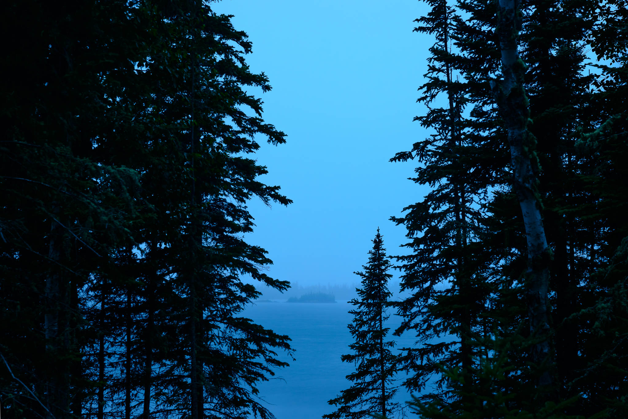 Sublime, eerie, and perfect. Lane Cove, Isle Royale, NP.