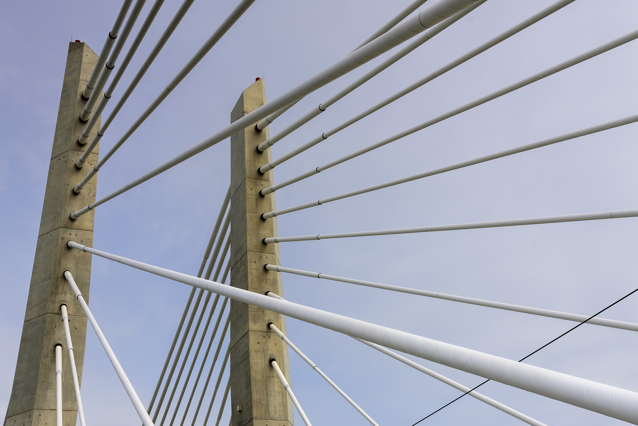 They almost look climbable. Tilikum Crossing, Central Portland.