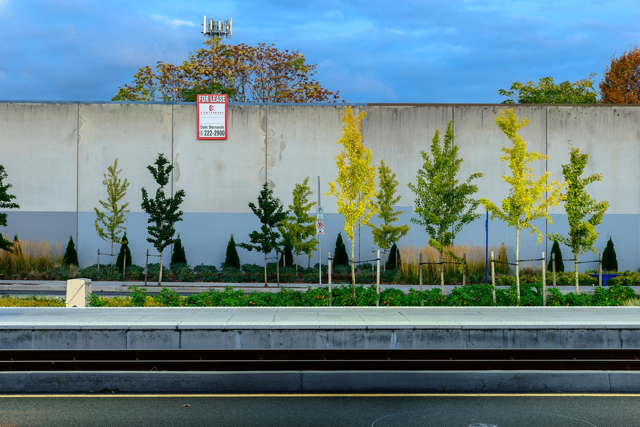 The Orange Line. SE Portland.
