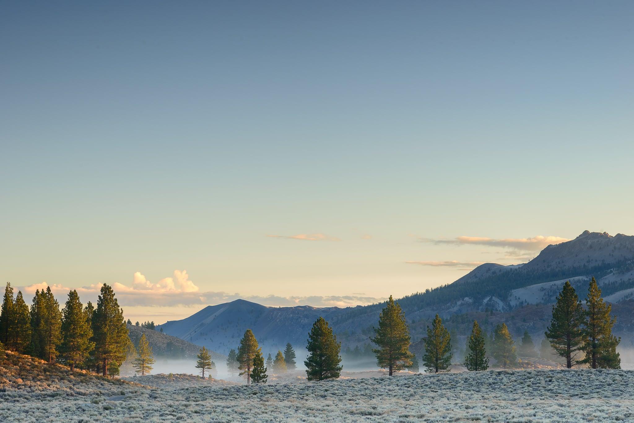June Lake adjacent and early morning fog.