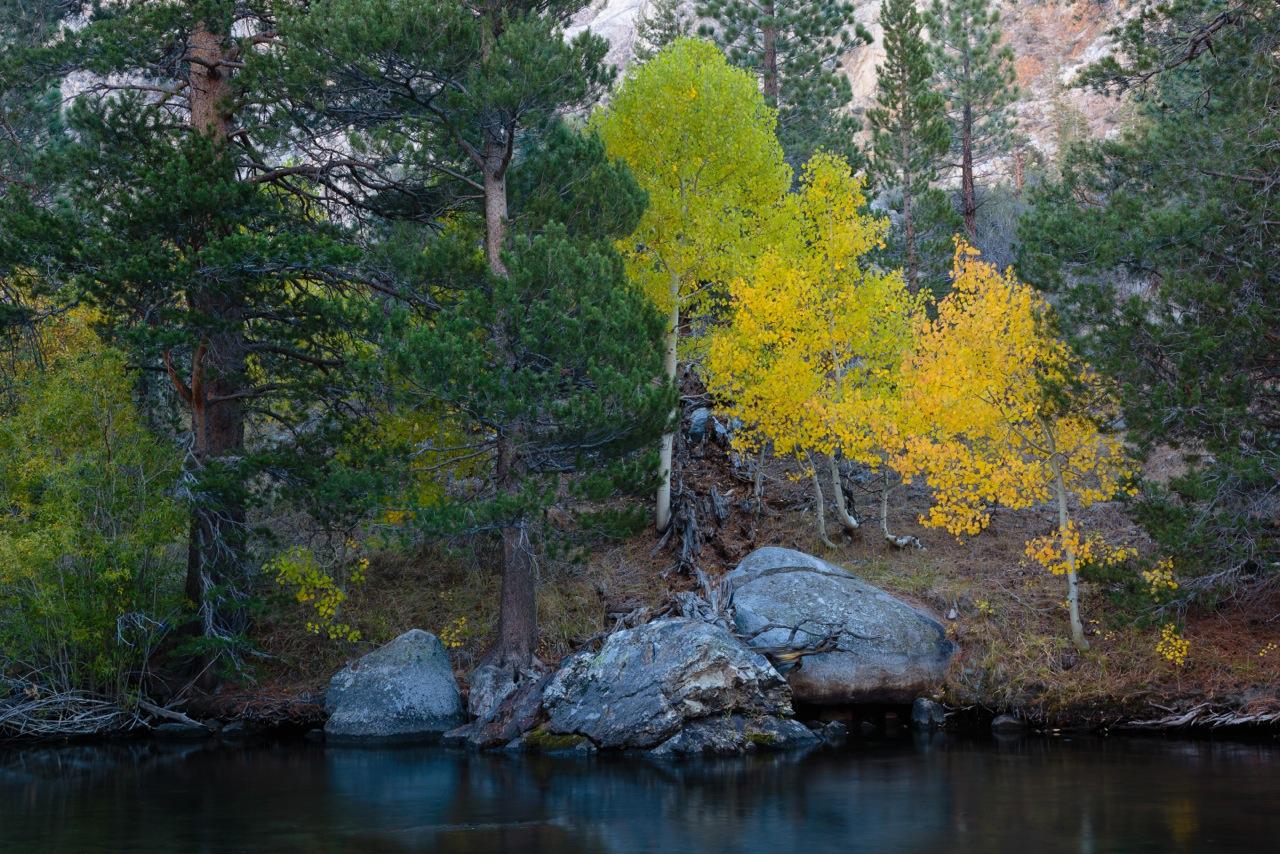 Lisa Erdberg - June Lake, CA