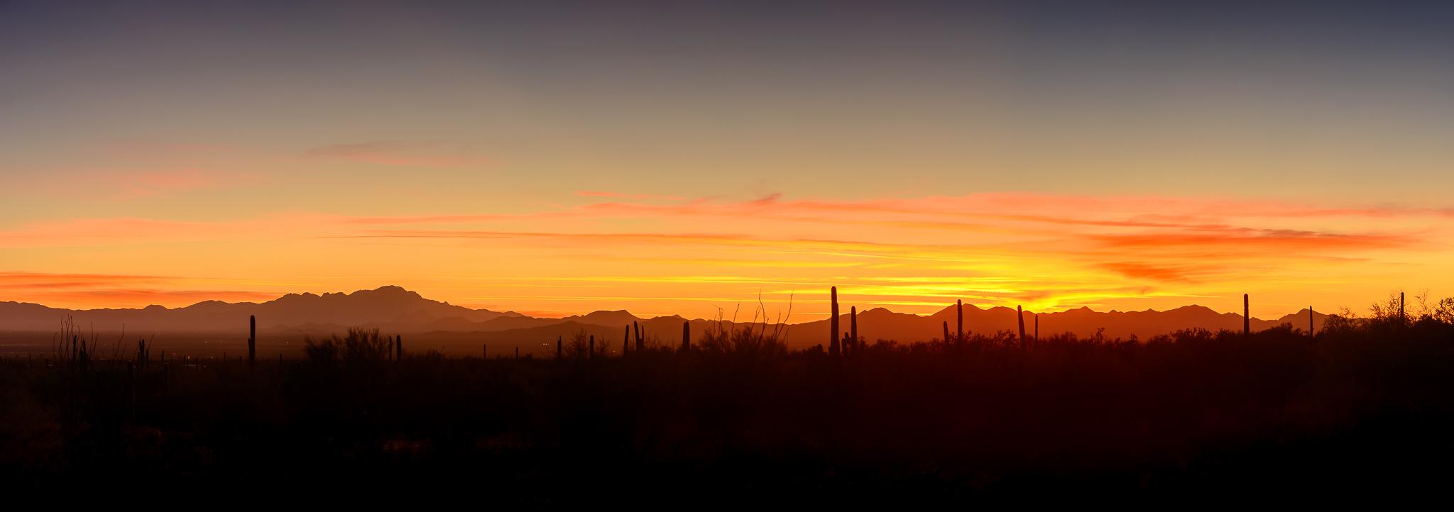 Send off salute. Saguaro National Park, AZ.