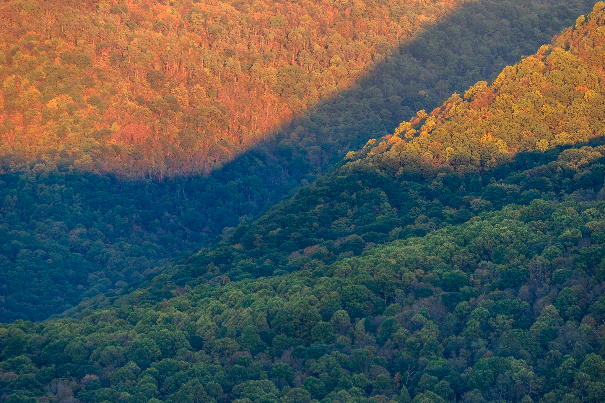 Sloping mountains making wonderful projection screens for the sun's late day rays. Ohiopyle State Park, PA.