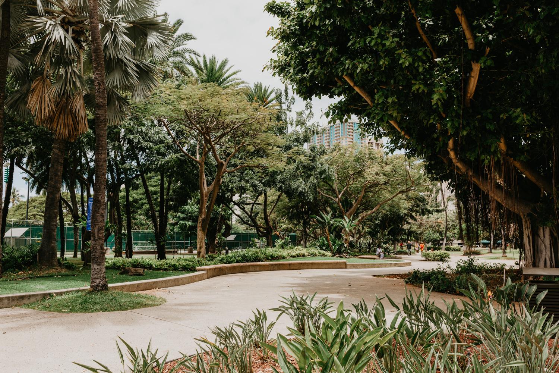 The park by Waikiki Beach