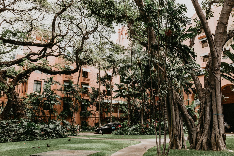 Sydney Lifestyle Photographer Royal Hawaiian-17.jpg