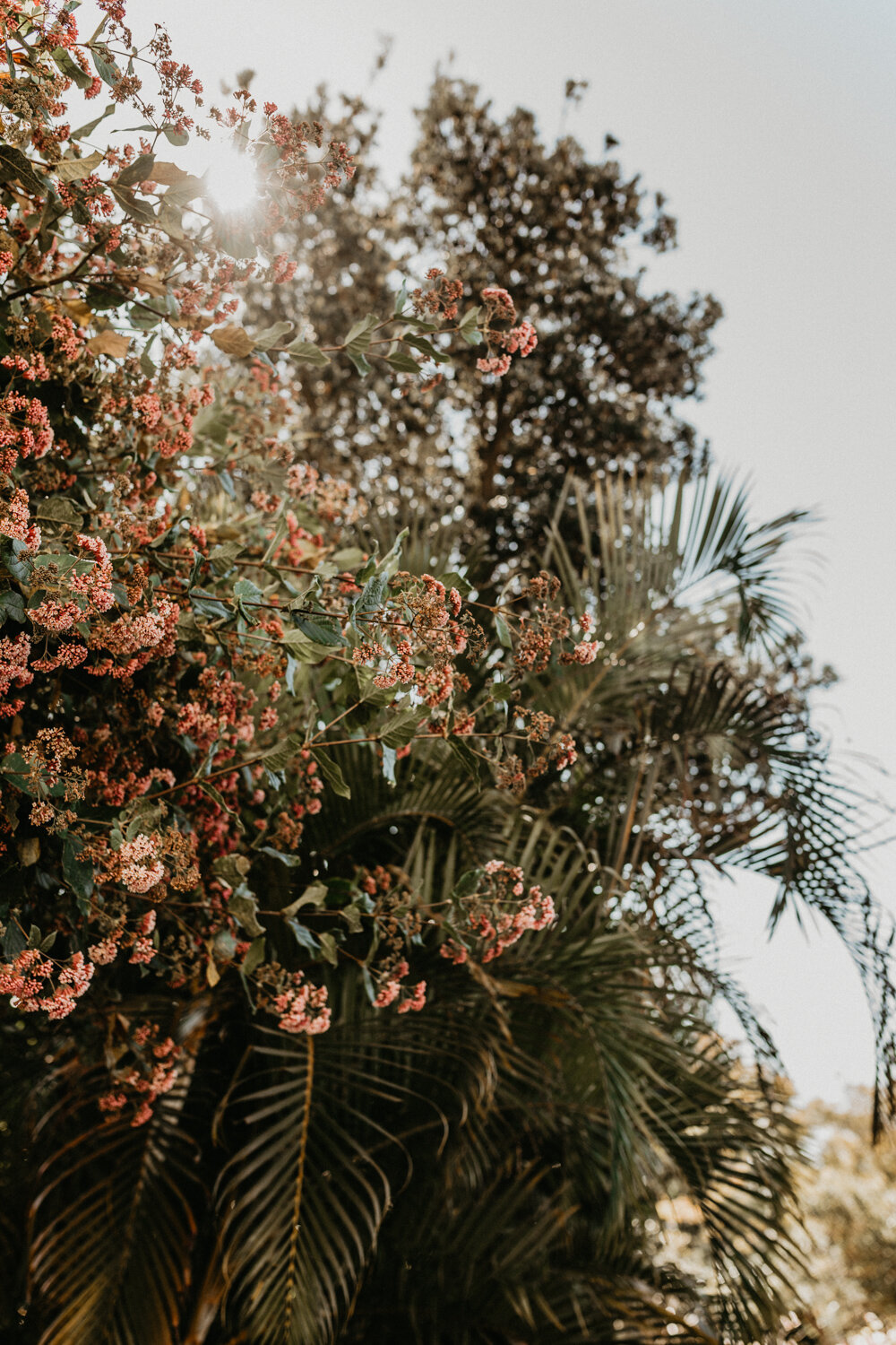 Palm Beach Wedding Photographer Boho Candid Autheitic Natural Free Spirited-13.jpg