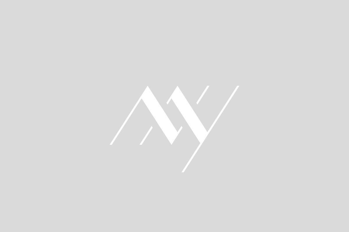 anvy_1.jpg