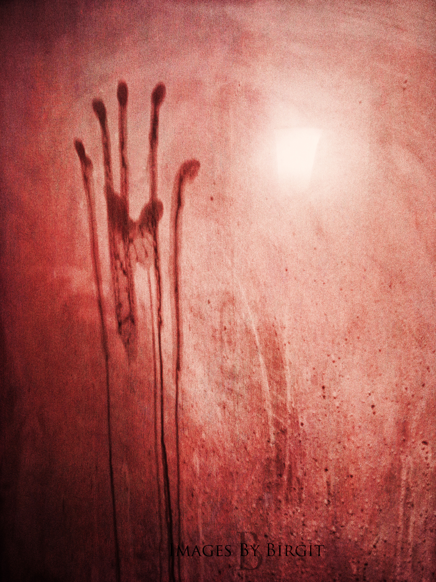 handprint on showerdoor 2.jpg