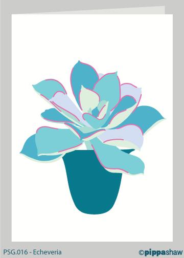 Echeveria Greetings Card by Pippa Shaw