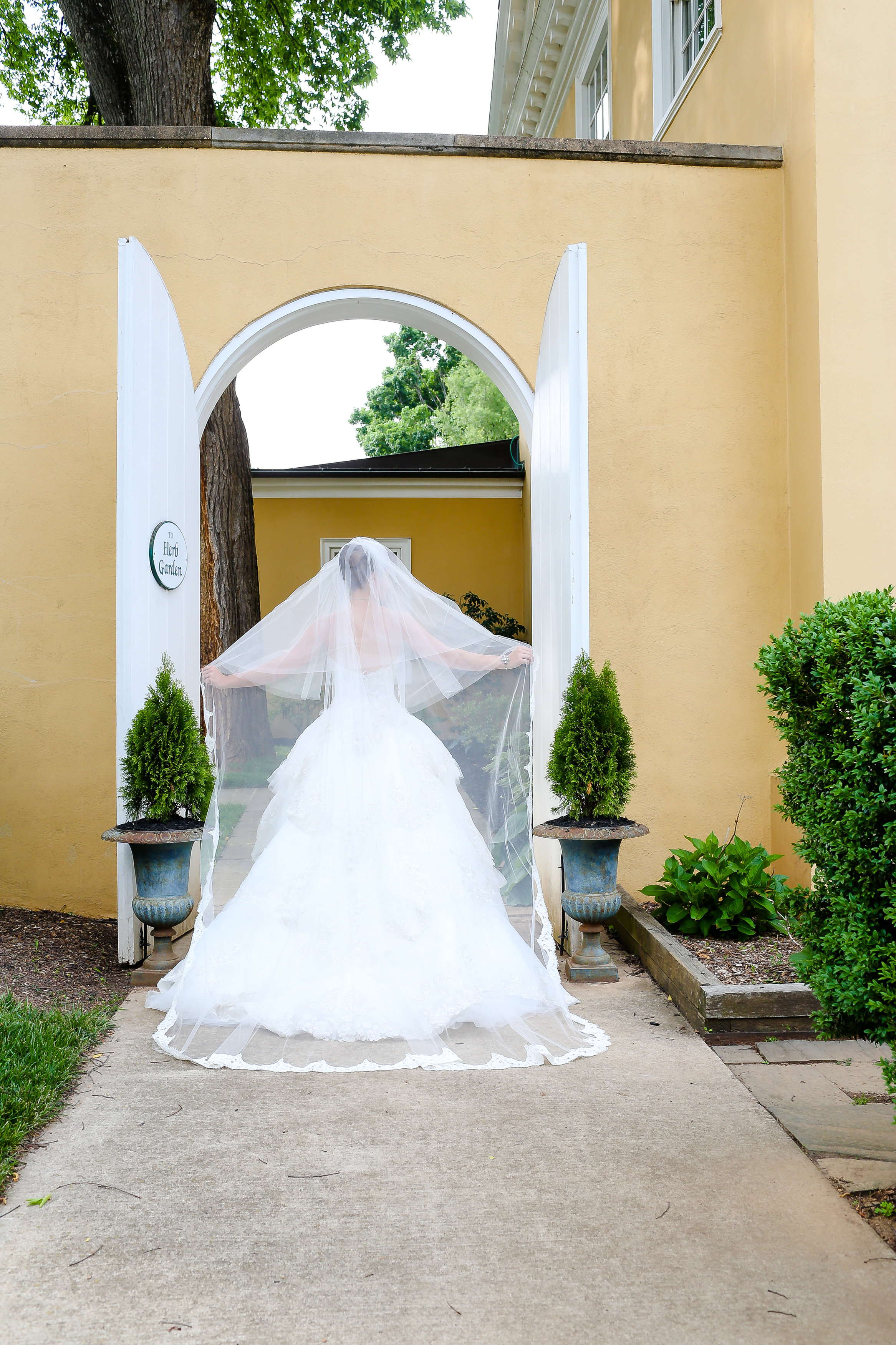 Brides & Weddings-0043.jpg