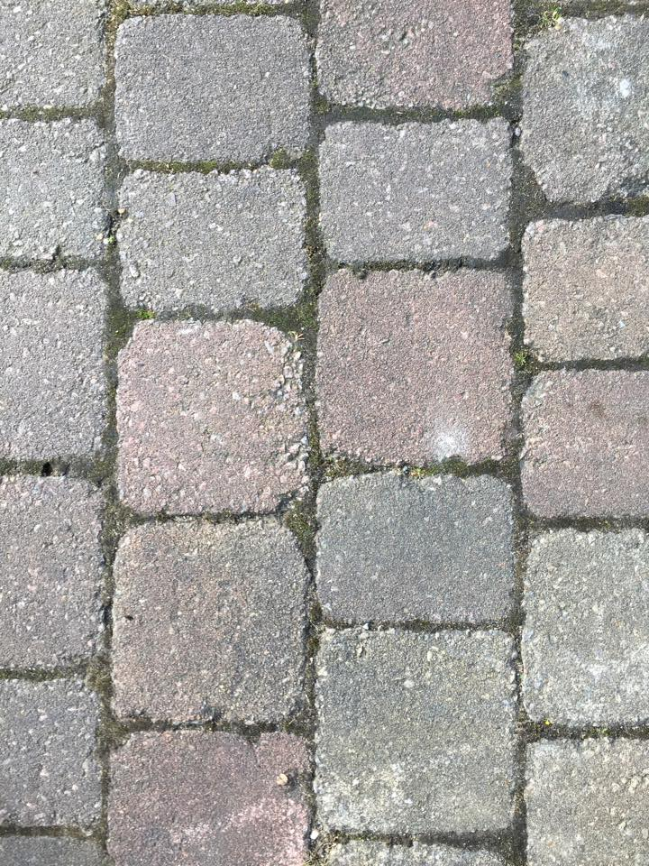 Tried looking block paving, dirty blocks and full of moss